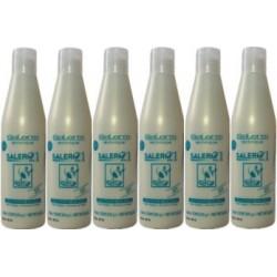 6 Salerm 21 Technique With B5 Provitamin Liposomes 8.6 oz / 250 ml